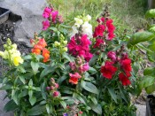 Test photo number two.
